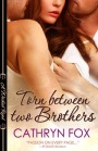 Book Review: Torn Between Two Brothers