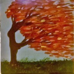Fiery Wind Dancer