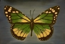Golden Green Butterfly